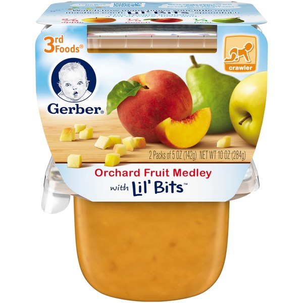 Gerber 3 Rd Foods 3F Orchard Fruit Medley with Lil' Bits Purees Fruit