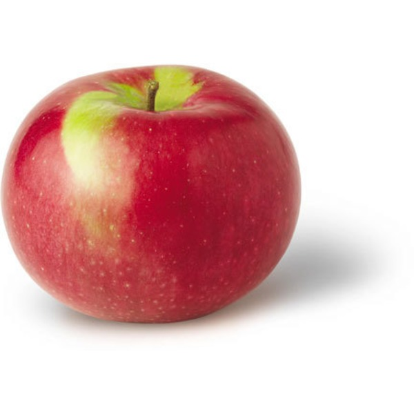 Organic Macintosh Apple