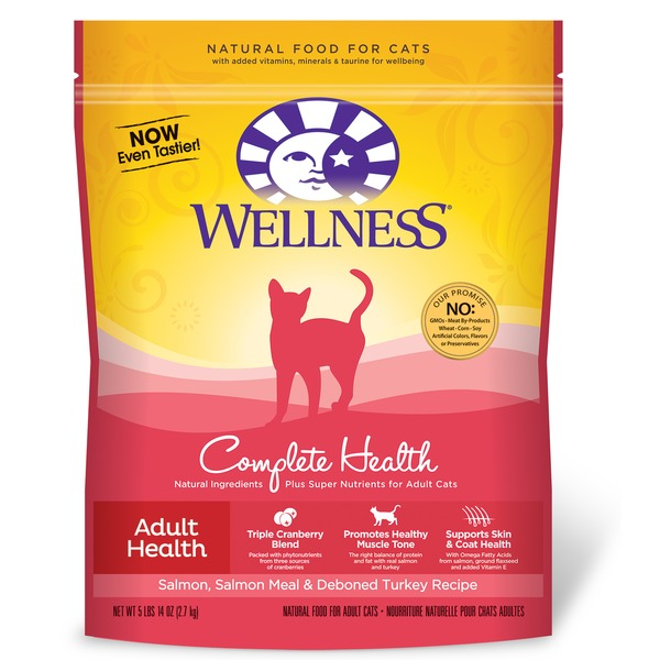 Wellness Salmon Dry Cat Complete Food