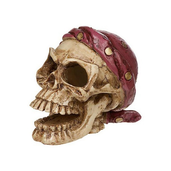 Petco Pirate Skull Aquatic