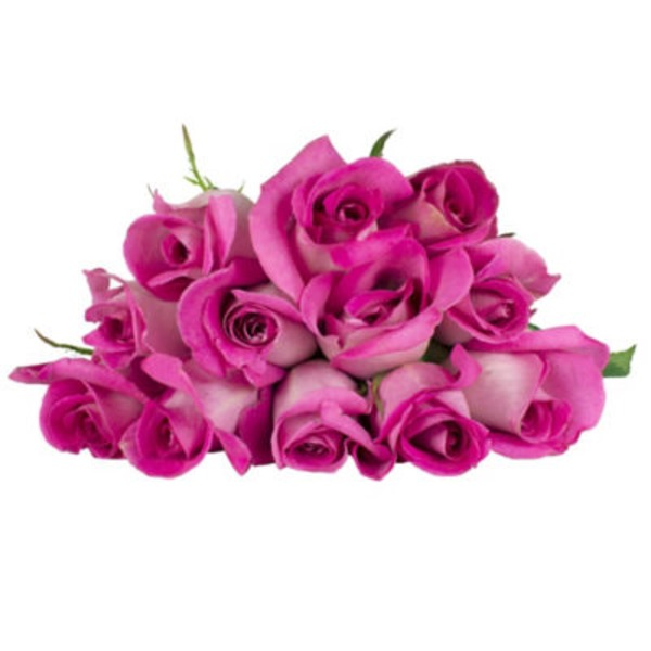 H-E-B Blooms Pink Roses