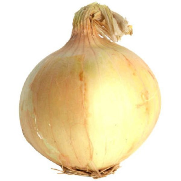 Yellow Onion, Large