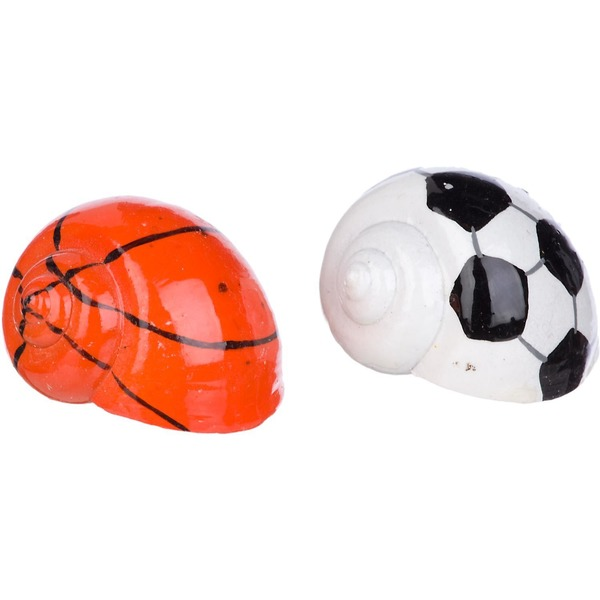 Conceptual Creations Hermit Crab Sports Shells Pack Of 2 Shells