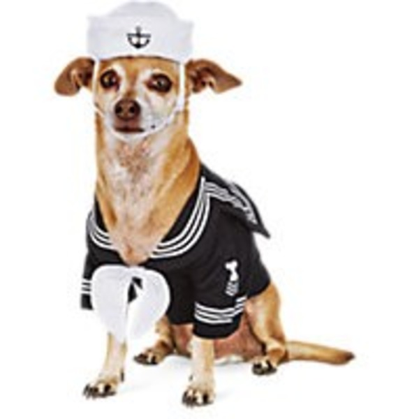 Extra-Extra-Large Halloween Dog Navy Costume