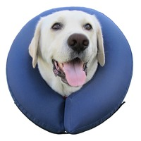 Pro Cone Extra Large Protective Collar
