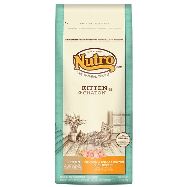 Nutro Kitten Chicken & Whole Brown Rice Recipe Dry Cat Food