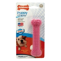 Nylabone Dental Chew Puppy Bone