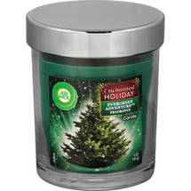 Air Wick Enchanted Holiday Evergreen Adventure Candle