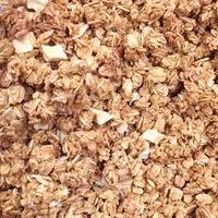 Golden Temple Bakery Low Fat Apple Cinnamon Granola