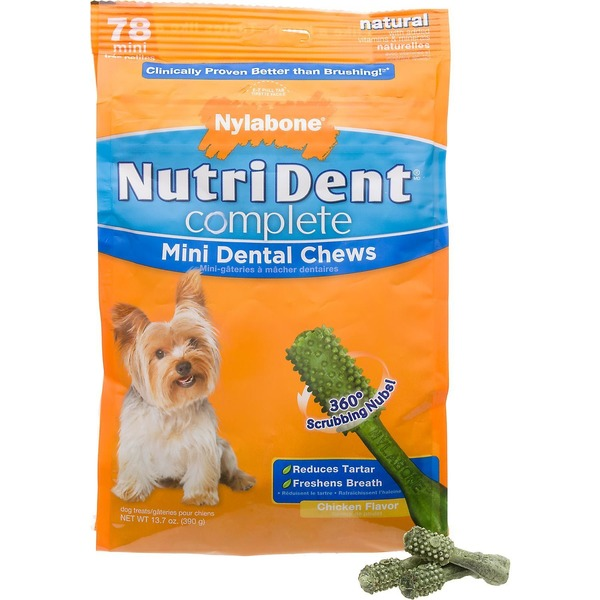 Nylabone Nutri Dent Complete Mini Dental Chews Dog Treat
