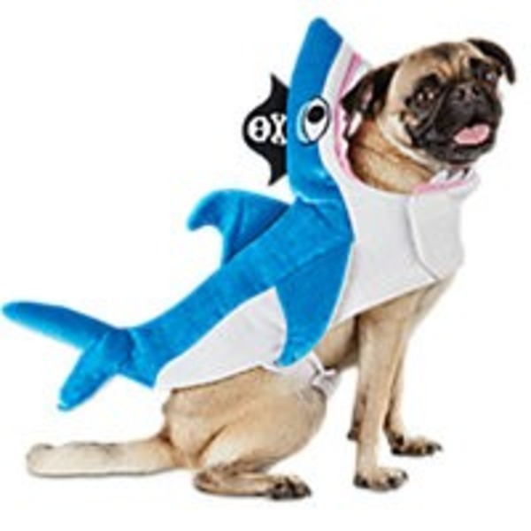 Medium Halloween Shark Costume
