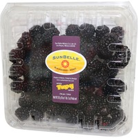 Driscoll's Fresh Blackberries