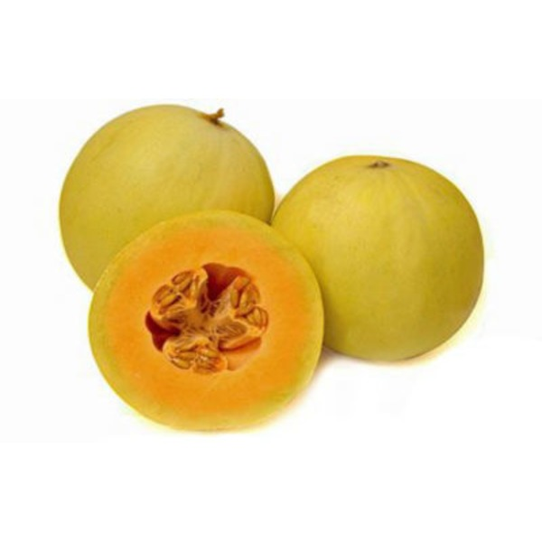 Orange Honeydew Melon