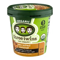 Three Twins Organic Sea Salt Caramel Ice Cream