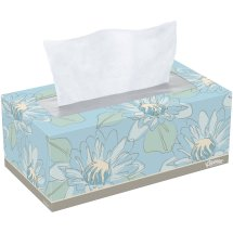 Kleenex Lotion Aloe & E Facial Tissue, 120 sheets