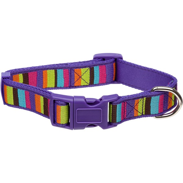 Planet Petco Medium Adjustable Purple Striped Eco Dog Collar