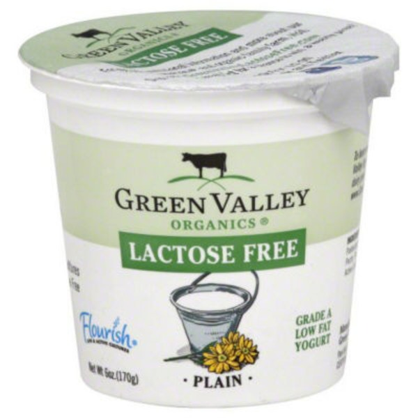 Green Valley Organics Organic Low Fat Plain Yogurt