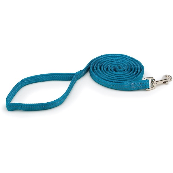 Aspen Pet Lead Padded Reflective Teal 5/8