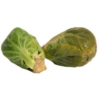 Brussel Sprouts, Loose Case
