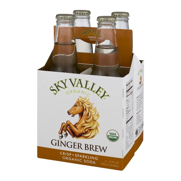 Sky Valley Organic Soda Ginger Brew - 4 CT