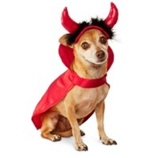 Extra-Small/Small Halloween Devil Costume
