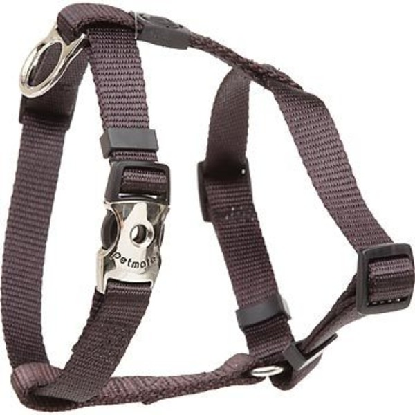 Petco Pet match Harness Coal