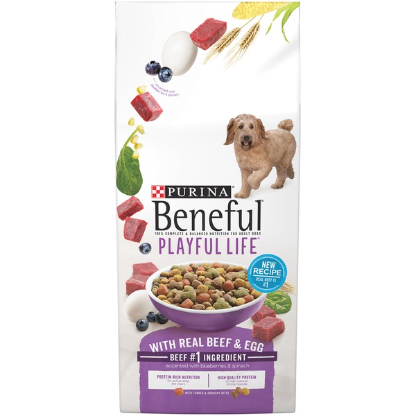 Beneful Dry Playful Life With Real Beef & Egg Dog Food