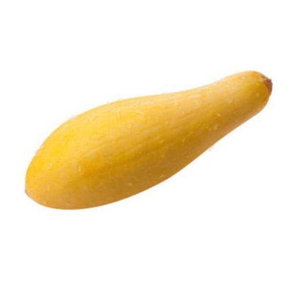 Fresh Organic Yellow Squash