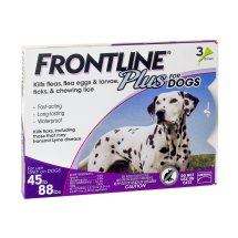 Frontline Plus Flea and Tick Prevention for Large Dogs, 3 Monthly Treatments