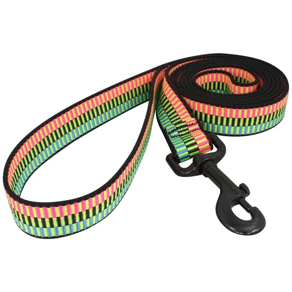 Bison Pet Rad Nylon Dog Leash 1