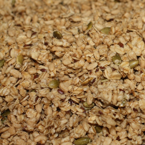 Nature's Path Organic Flax Plus Pumpkin Seeds Granola
