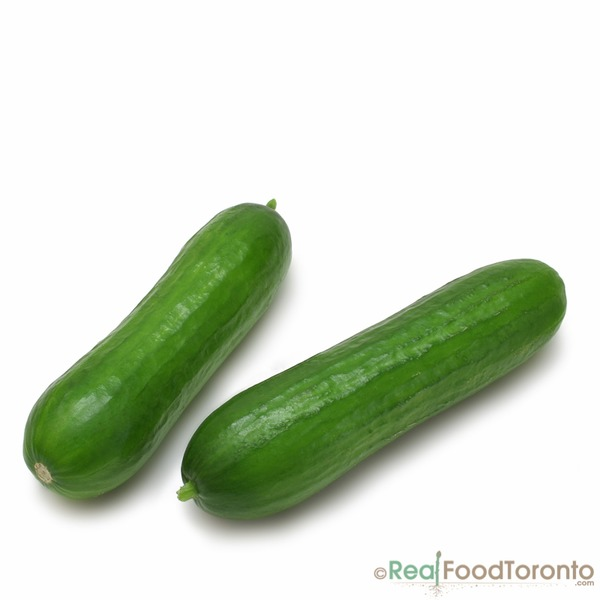 Organic Seedless Cucumber