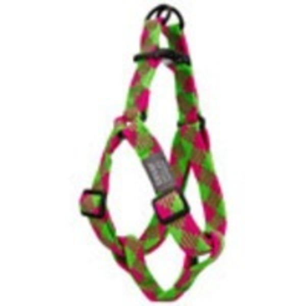 Ceasar Milan Pink/Lime Braided Harness