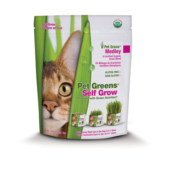 Bell Rock Growers Live House Blended Pet Grasses
