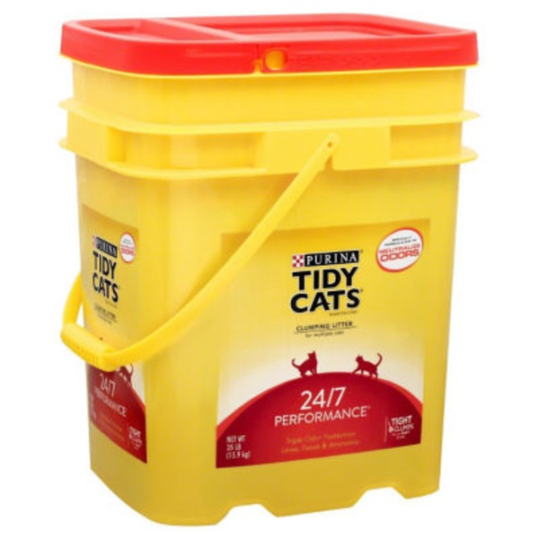best place to buy cat litter