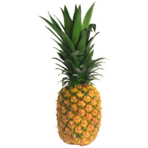 Fresh Organic Gold Pineapple
