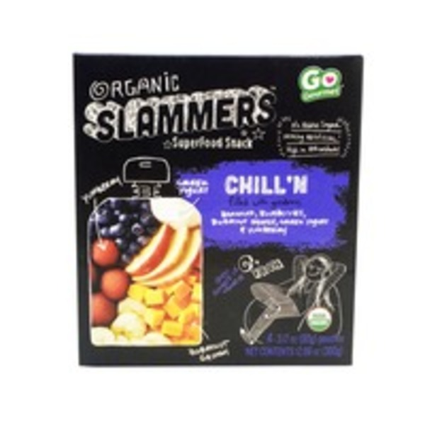 Slammer's Chill'N Fruit & Yogurt Filled Pouches Organic Superfood Snack