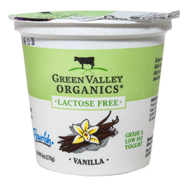 Green Valley Organics Lactose Free Low Fat Yogurt Vanilla