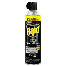 Raid Wasp & Hornet Killer, 17.5 oz