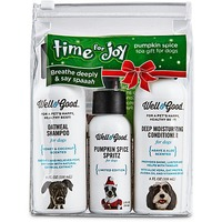 Holiday Pumpkin Spice Spa Kit