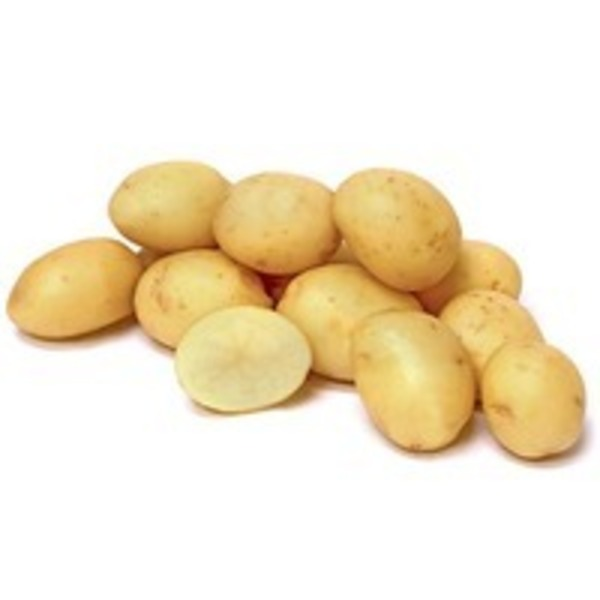 Organic White Potato