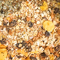 Golden Temple Bakery 35% Fruit Muesli
