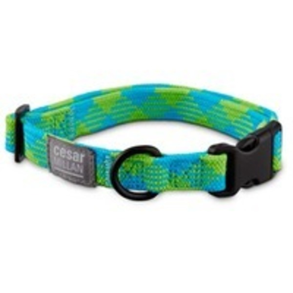 Cesar Millan Medium Braided Collar Blue Lime