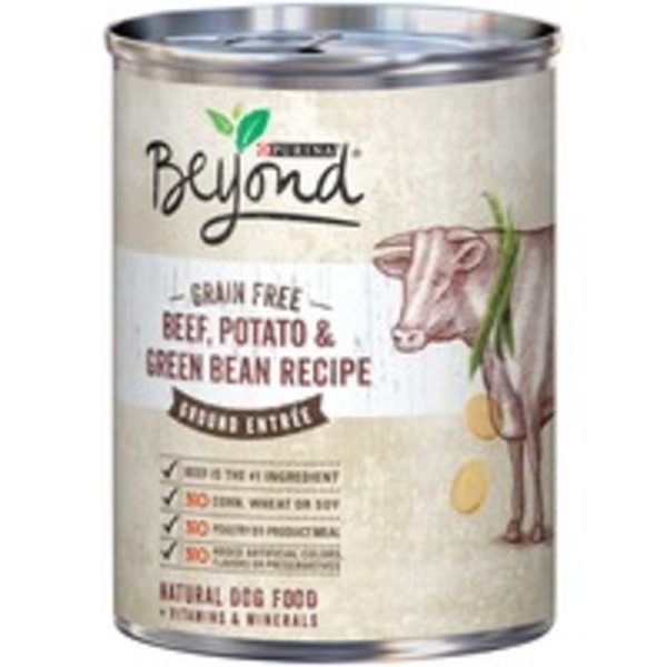 Beyond Dog Wet Grain Free Beef Potato & Green Bean Recipe Ground Entree Dog Food