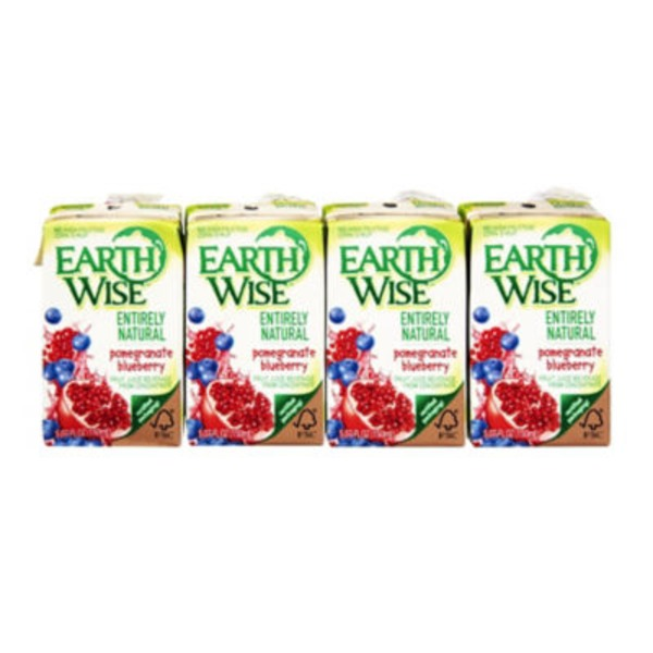 Earth Wise Aseptic Entirely Natural Pomegranate Blueberry 5.07 Oz Fruit Juice Beverage