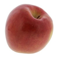 Organic Large Extra Fancy Fuji Apple
