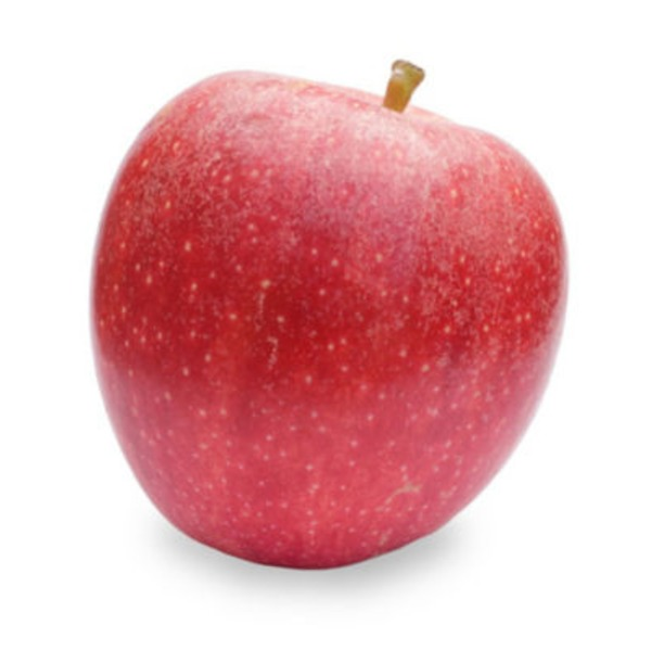 Fresh Small Gala Apple