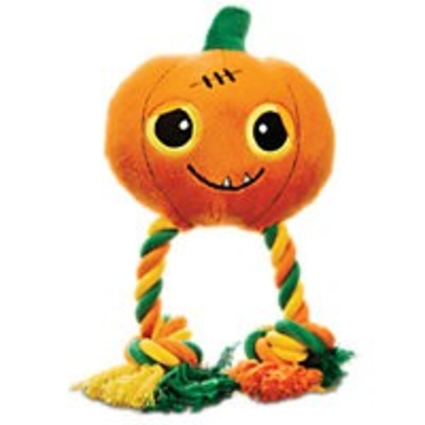 Petco Medium Halloween Pumpkin With Rope Limbs