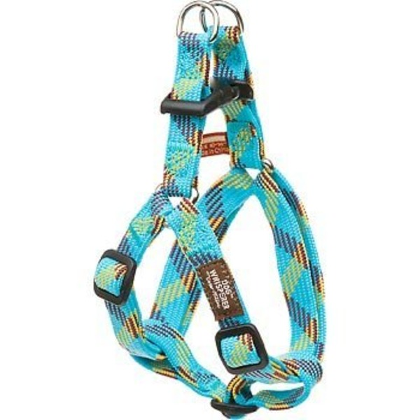Cesar Millan Large Blue and Lime Braided Step-In Dog Harness