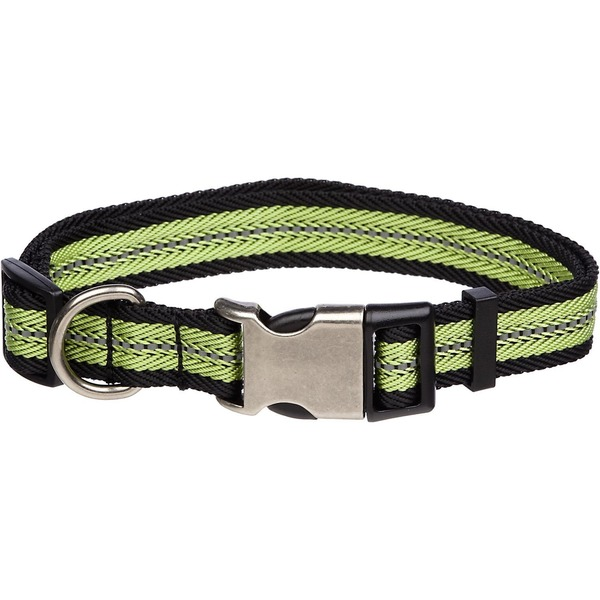 Petco Green  Reflective Adjustable Dog Collar